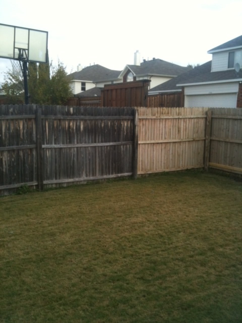 fence bleaching